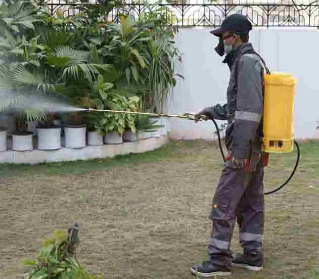 pest services Pakistan 1