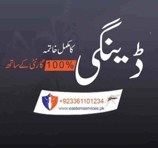 Dengue Control Services in Pakistan