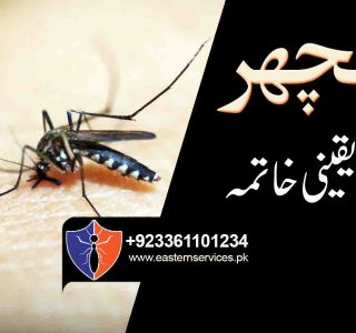 Mosquitoes Control Services in pakistan