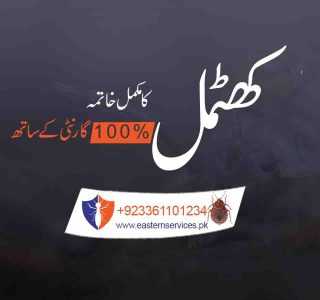 bed bugs control services in pakistan