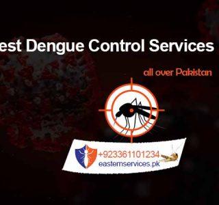 best dengue control services in rawalpindi