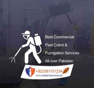 commercial pest control services in pakistan