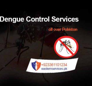 dengue control services rawalpindi, islamabad