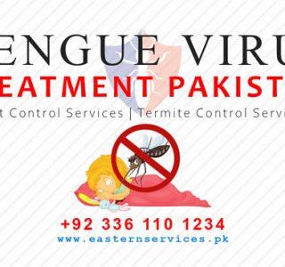 dengue virus treatment services Pakistan