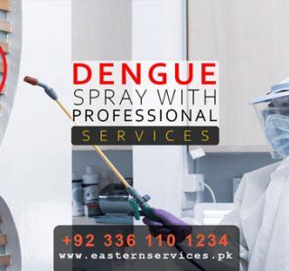 Dengue mosquito control spray in pakistan