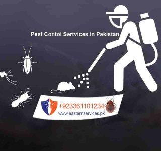 exterminator with qualitative pest control services