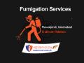 best fumigation services in rawalpindi