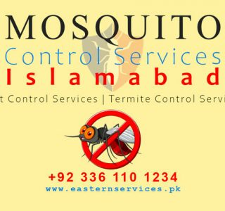 mosquitoes control services Islamabad