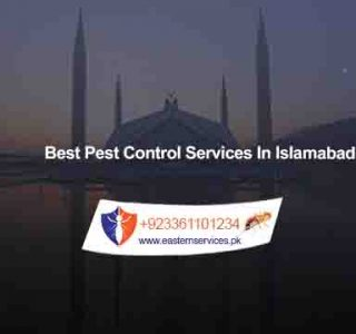 best pest control services in islamabad pakistan