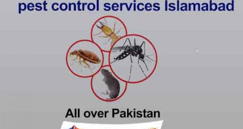 pest management services Islamabad Pakistan