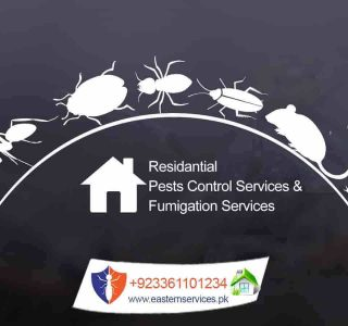 residential pest control services and fumigation services in Rawalpindi, Islamabad