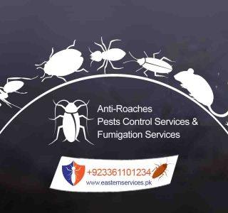 best roaches control services Pakistan