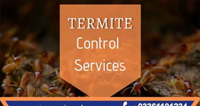 best termite control services all over pakistan
