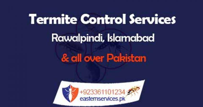 Best termite control services in rawalpindi